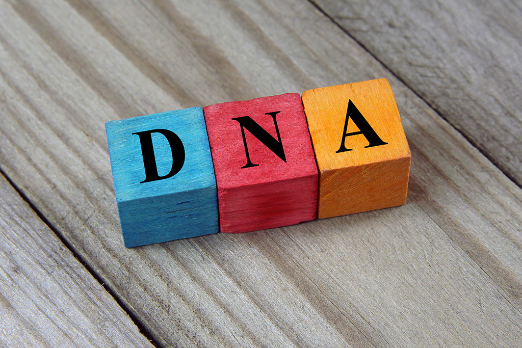 Biological Father DNA Paternity Matter